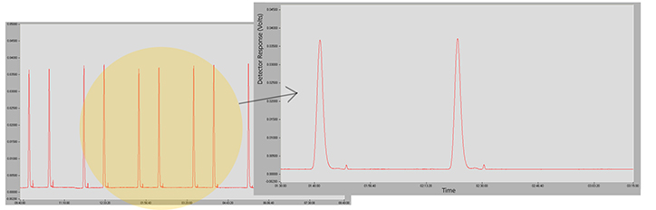 Chromatogram showing the consecutive injection of 6 vials, two injections per vial with no dilution. Detail showing the IR concentration signal stability.